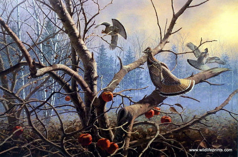 David Maass Autumn Orchard-Ruffed Grouse