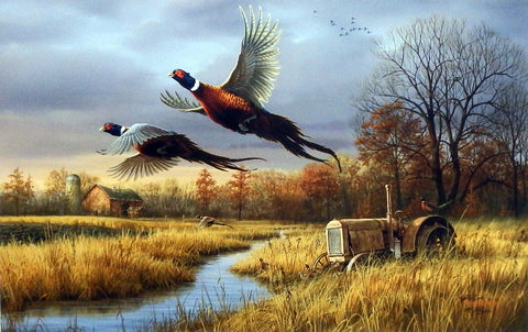 James Hautman Back Forty Pheasants