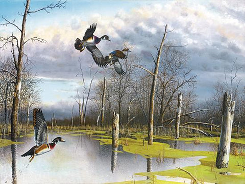 Jim Hansel Backwater Woodies Duck Art Print