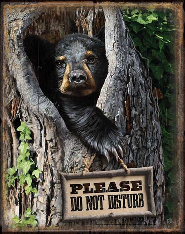 Please Do Not Disturb Tin Sign