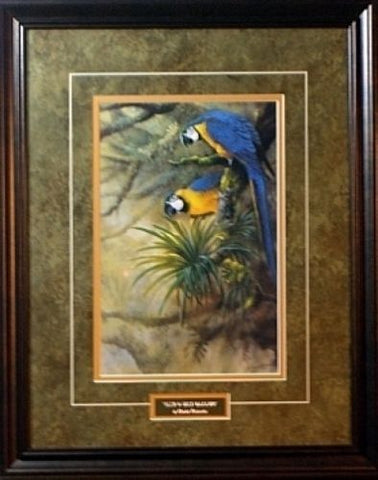 Gamini Ratnavira Framed Blue and Gold Macaws Print