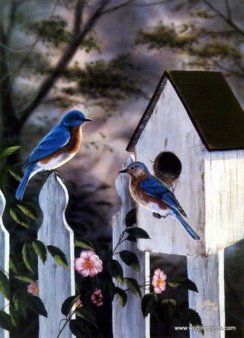 Rick Kelley Bluebirds