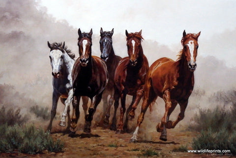 Chris Cummings Galloping Wild Horses Herd