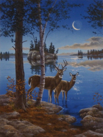 Darrell Bush Night Cap Deer Lake Art Print