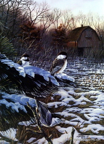 Rick Kelley Chickadees