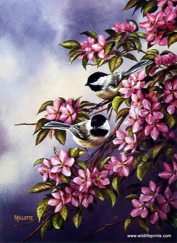 Rosemary Millette Crabapple Pair- Chickadees