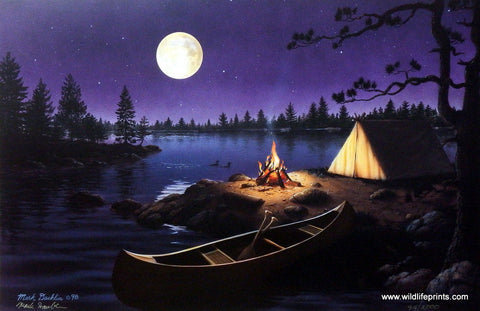 Mark Daehlin Moonlight Retreat Wildlifeprints Com
