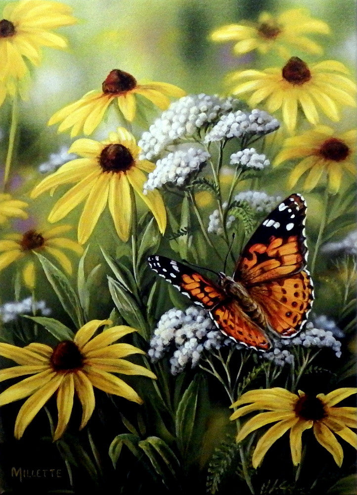Rosemary Millette Painted Lady Butterfly Wildlifeprints Com