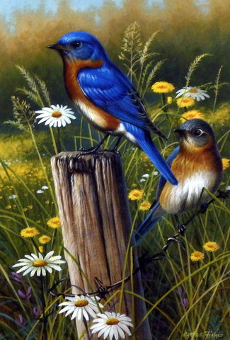 Artist Cynthie Fisher Unframed Bluebird Print Eastern