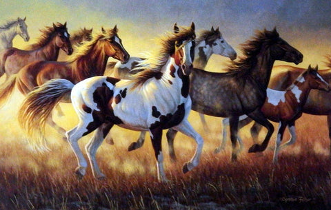 Cynthie Fisher Wild Horses Picture WILD FIRE