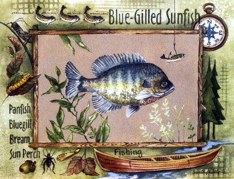 Anita Phillips Bluegill Fishing Print Wall Decor