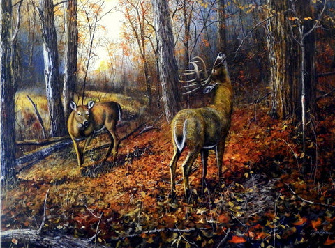 "Jim Hansel ""Signs of Autumn"""