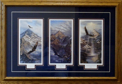 Rick Kelley Freedom Trilogy Framed