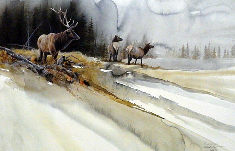 Mike Capser Fall Passage Elk 21 x 14