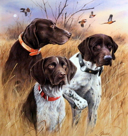 James Killen Great Hunting Dogs-German Shorthair SN AP 18 X 20