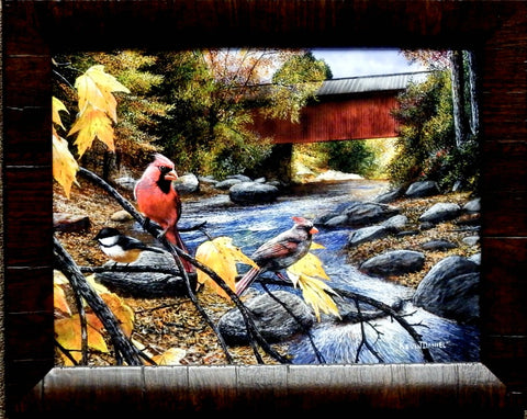 Kevin Daniel Shared Moments Cardinal  Bird Art Print
