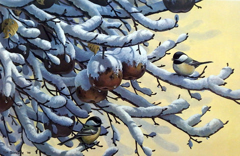 Tim Schultz December Orchard