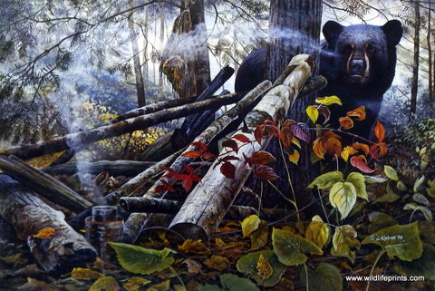 Chris Kuehn Black Bear Picture