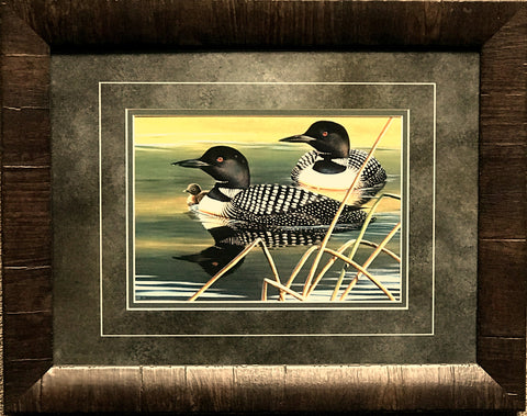 Cynthie Fisher Calm Reflections Loon Family Art Print-Framed