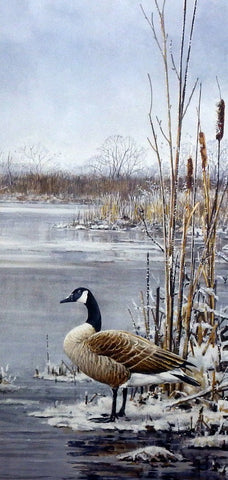 Scott Zoellick Frosty Morning Gander