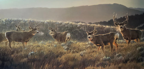 Nancy Glazier The Gathering Place Elk Mountain Art Print