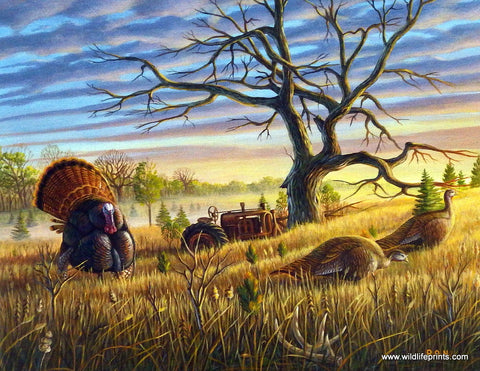 Ron Nelson Gobbler of the Lone Oak Meadow