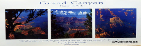 Gerald Brimacombe Grand Canyon