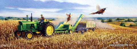 Charles Freitag Picture John Deere Tractor Corn Harvest