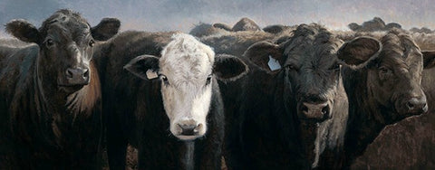 Charles Freitag Here's the Beef Angus Cattle Art Print