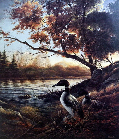 Terry Redlin Loon Print HIDDEN POINT