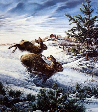 Terry Redlin Cottontail Rabbit Print HIGHTAILING