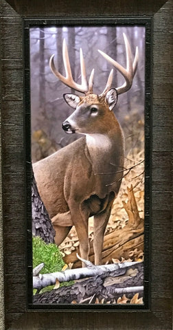 Jerry Gadamus My Best Side Deer Buck Art Print-Framed