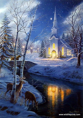 James Meger Holy Night