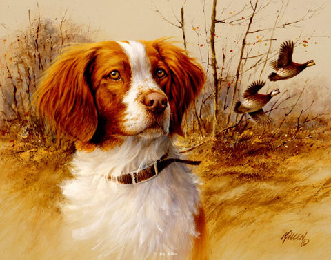 James Killen In the Field Brittany Spaniel S/N Print