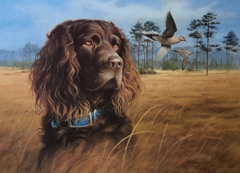 James Killen In The Field Boykin Spaniel S/N Art Print