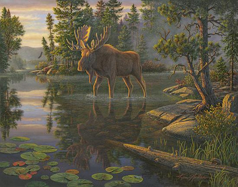 Kim Norlien King of the North Moose Art Print 22 x 18