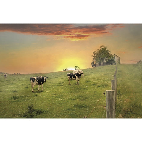Lori Deiter Morning Moos Country Cow Art Print 18 x 12