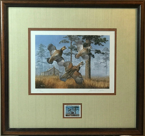 David Maass 1982 Quail Research S/N Print with Stamp-Framed