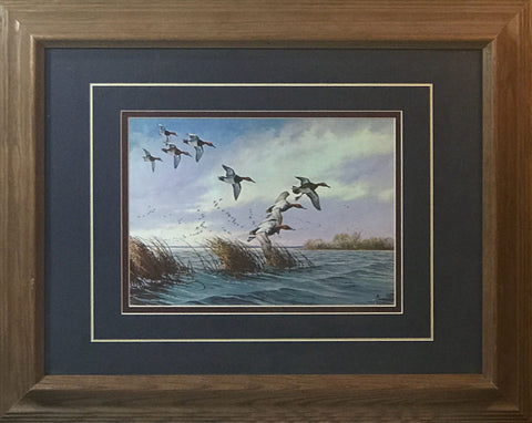 David Maass Ducks Flying Low Framed Art Print
