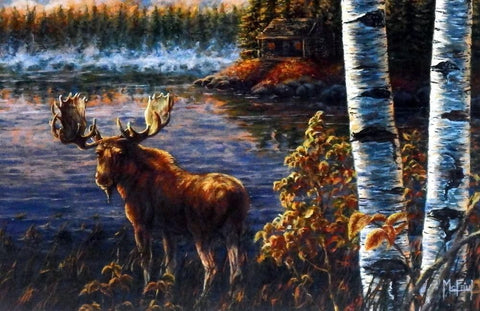 "John Mcfaul "" I Can hear you"" Northwoods Moose"