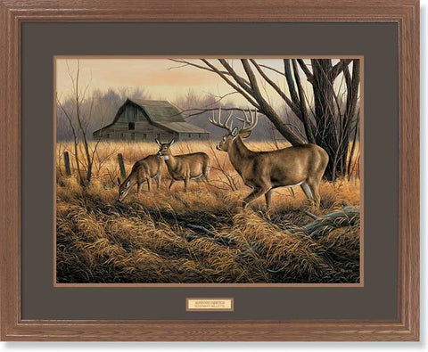 Rosemary Millette Abandoned Farmstead-Whitetails-Framed