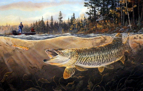 Terry Doughty Muskie Bay