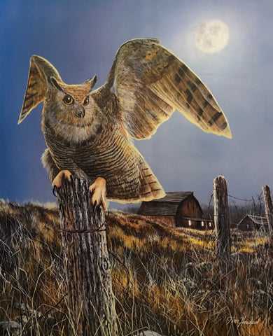 Jim Hansel Night Owl Farm Barn Art Print 17 x 21.5