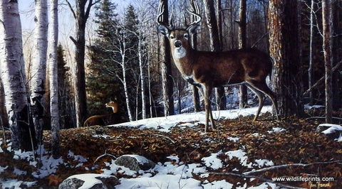 Jim Hansel Northridge Whitetails