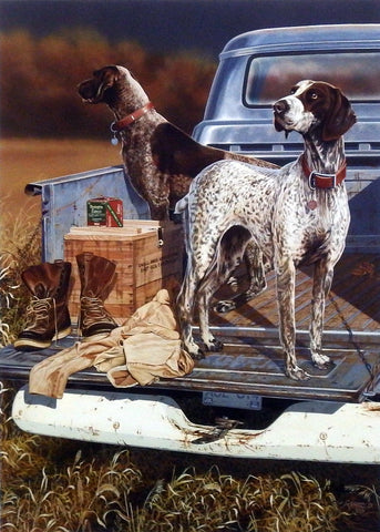 Scot Storm Opening Day- German Shorthair