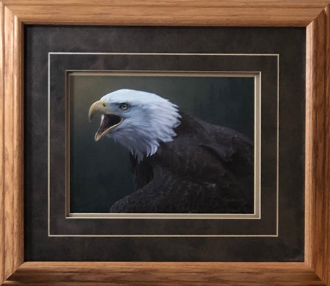 Daniel Smith Out of the Silence S/N Eagle Art Print-Framed