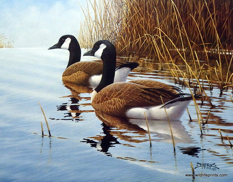 Art print of Canadian Geese