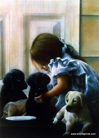 Kevin Daniel Puppy Love