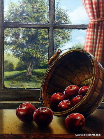 Doug Knutson Red Delicious
