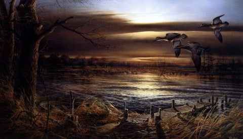 Terry Redlin Reflections